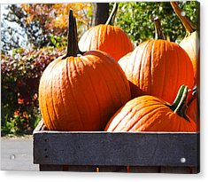 Acrylic Print featuring the photograph Autumn Harvest by Julia Wilcox