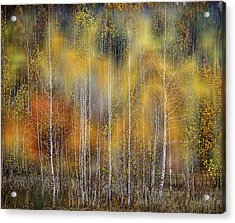 Autumn Impression Acrylic Print