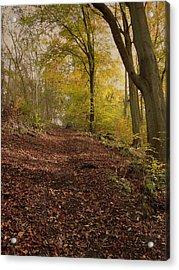 Autumn In Brantingham Woods Acrylic Print