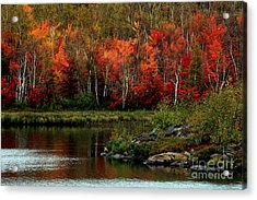 Autumn In Canada 2 Acrylic Print