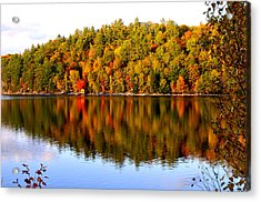 Autumn In Cottage Country Acrylic Print by Douglas Pike