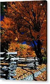 Acrylic Print featuring the photograph Autumn In Holderness by Rick Frost