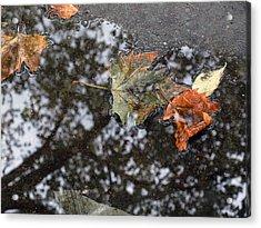 Autumn In New York City Acrylic Print by Chris Ann Wiggins