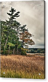 Autumn In Nh Acrylic Print by Edward Myers