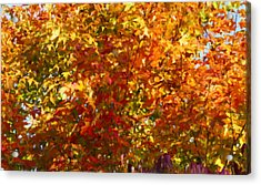 Autumn In October Acrylic Print by Anthony Rego