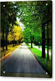 Autumn Is Comming Acrylic Print by German Savchishen