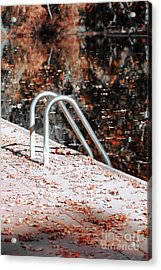 Autumn Ladder Acrylic Print by David Taylor