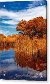 Autumn Landscape Acrylic Print by Gabriela Insuratelu