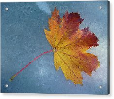 Autumn Leaf Under Glass Acrylic Print by Margie Avellino