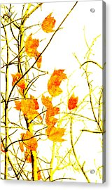 Autumn Leaves Abstract Acrylic Print by Andee Design