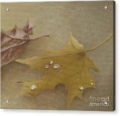Autumn Leaves Acrylic Print by Annemeet Hasidi- van der Leij