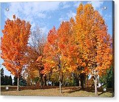 Autumn Leaves Acrylic Print by Athena Mckinzie