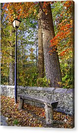 Autumn Light Acrylic Print by Benanne Stiens