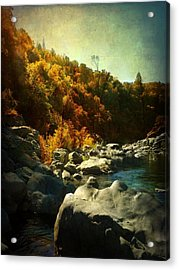 Autumn Lights Acrylic Print by Leah Moore