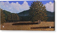 Acrylic Print featuring the painting Autumn Meadow by Janet Greer Sammons