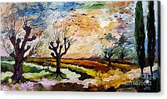 Autumn Migration Panoramic Landscape Acrylic Print by Ginette Callaway