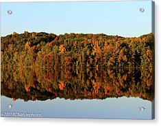Acrylic Print featuring the photograph Autumn Mirror by Rachel Cohen