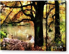 Autumn Oak Tree Acrylic Print
