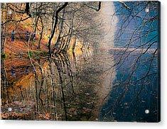 Autumn Acrylic Print by Okan YILMAZ