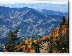 Acrylic Print featuring the photograph Autumn On The Blue Ridge Parkway by Lynne Jenkins