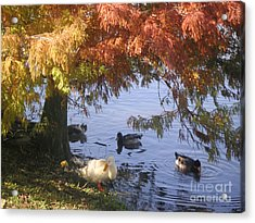 Autumn Peace Acrylic Print by Lucyna A M Green