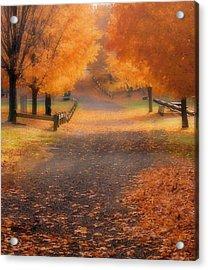 Acrylic Print featuring the photograph Autumn by Raymond Earley