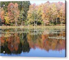 Autumn Reflections Acrylic Print by Kim Galluzzo Wozniak