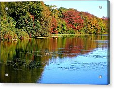 Autumn Reflections Acrylic Print by Susan Elise Shiebler
