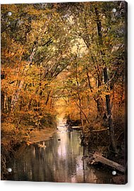 Autumn Riches 2 Acrylic Print by Jai Johnson