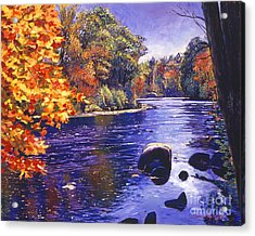 Autumn River Acrylic Print by David Lloyd Glover