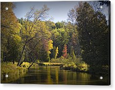 Autumn Scene Of The Little Manistee River In Michigan No. 0890 Acrylic Print