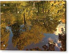 Autumn Sky Reflection Acrylic Print by Debra     Vatalaro