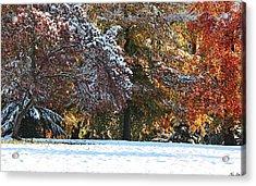 Autumn Snowstorm Acrylic Print by Kimberly Little