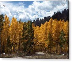 Autumn Splendor Acrylic Print by Carol Cavalaris