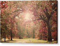 Autumn Splendor Acrylic Print by Susan Bordelon