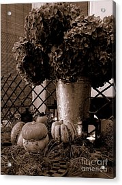 Autumn Still Life  3 Acrylic Print by Tanya  Searcy