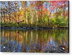 Autumn Stream Acrylic Print by Debra and Dave Vanderlaan