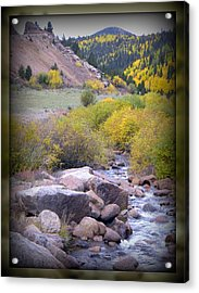 Acrylic Print featuring the photograph Autumn Stream by Michelle Frizzell-Thompson