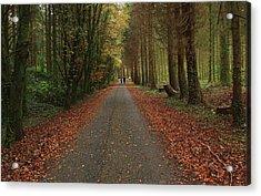 Autumn Stroll. Acrylic Print