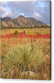 Autumn Sunrise Along The Mesa Trail Acrylic Print
