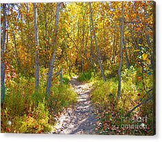Autumn Trail Acrylic Print by Jim Sauchyn