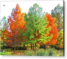 Autumn Trees Acrylic Print by Evgeniya Sohn Bearden