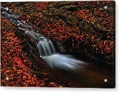 Autumn Waterfall Acrylic Print by Irinel Cirlanaru