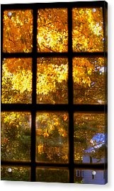 Autumn Window 2 Acrylic Print by Joann Vitali