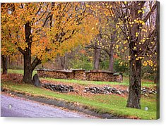 Acrylic Print featuring the photograph Autumn Woodpile by Tom Singleton
