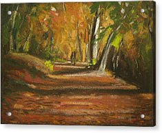 Autumn Woods 4 Acrylic Print by Paul Mitchell