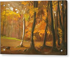 Autumn Woods 5 Acrylic Print by Paul Mitchell