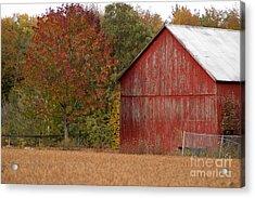 Autumnal Barn Acrylic Print by Ginger Harris