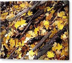 Autumnal Melody Acrylic Print by Leon Zernitsky