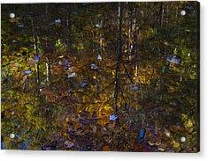 Autumnal Reflection Acrylic Print by Jim Neumann